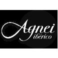 Logo Agnei