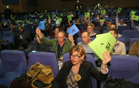 votacion asamblea 2015
