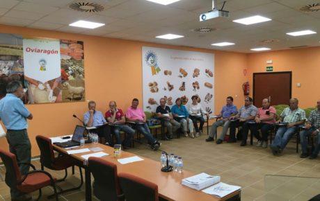 Formación Consejo Rector Oviaragón-Grupo Pastores