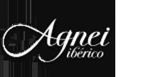 agnei-index